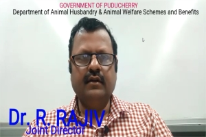 Image of Department of Animal Husbandry & Animal Welfare - Schemes and Benefits video